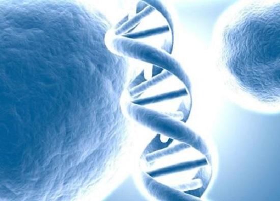 为什么要做卵巢癌基因检测?