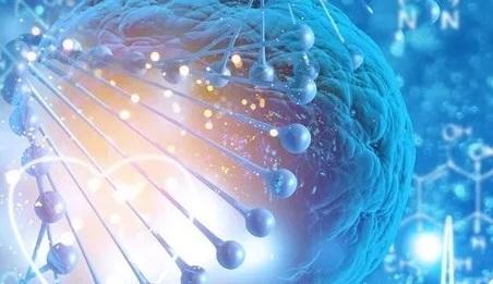 癌症基因检测的意义是什么?